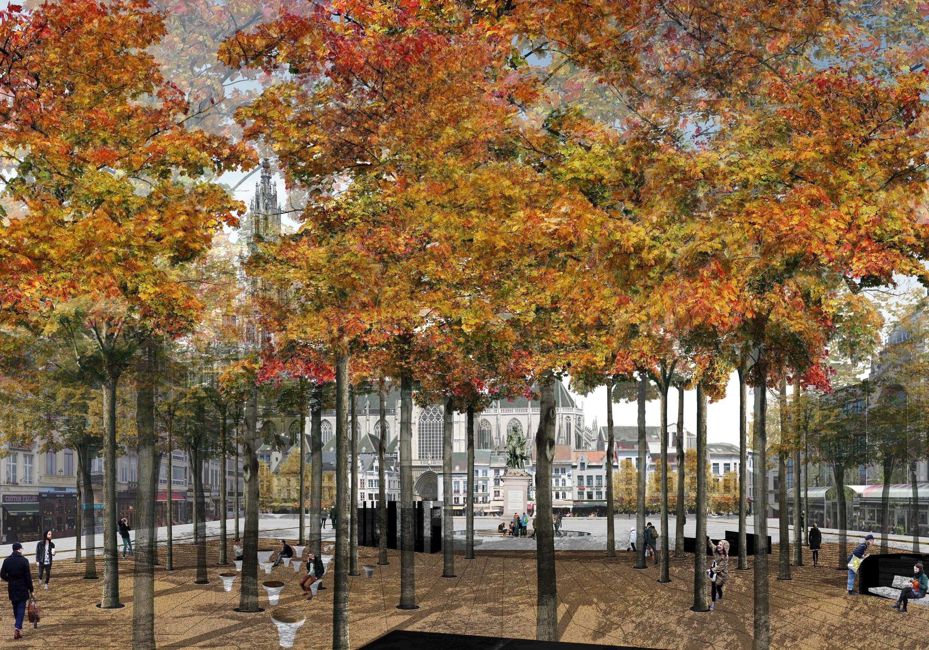 Volwaardige bomen vormen een onderdeel van de nieuwe Groenplaats